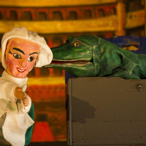 Anatole Pichenouille et le crocodile.
